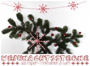 Weihnachtssterne