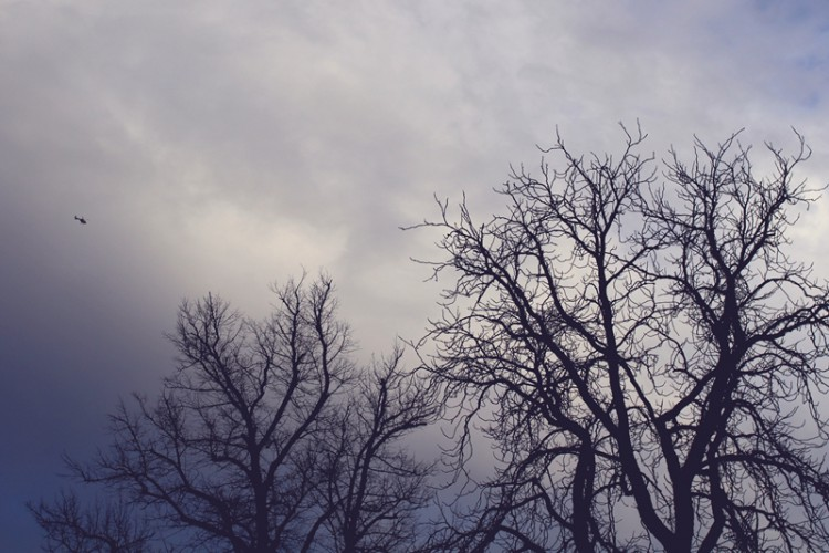 sundays (3)